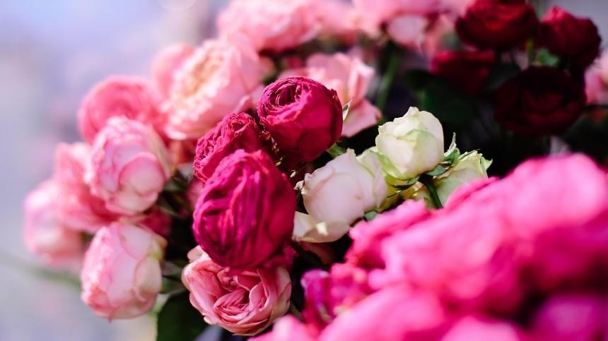 Тест: Вспомнители выназвание цветка пофото