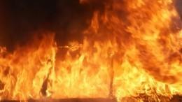 Пассажирский автобус сгорел посреди дороги вРостове-на-Дону— видео