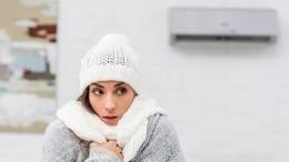 Чем опасны для здоровья бытовые кондиционеры? —отвечает академик РАН