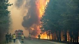 Огонь отлесных пожаров вплотную приблизился кТюмени. Пламя раздувает ветер