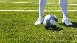 Миллионер купил футбольный клуб изаставил 126-килограммового сына играть внем