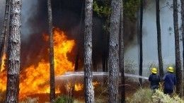Отстаивали то, что можно спасти: без жилья под Иркутском остались 18 человек