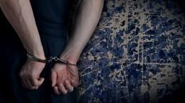Видео задержания напавшего научительницу школьника влицее вБерезниках