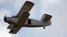 Самолет Ан-2 совершил жесткую посадку вТюменской области