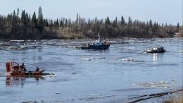 «Вся нефть— вкустах»: рыбак обвинил ликвидаторов разлива наКолве волжи