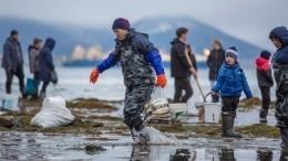 Дары природы: сахалинцы начали удобрять грядки икрой