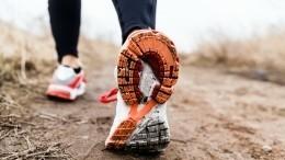 Смертельный марафон: вКНР завершилась операция попоиску пропавших спортсменов