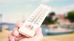 Несусветная жара: Гидрометцентр предупредил обаномальном тепле врегионах РФ