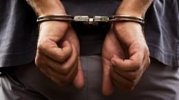 Подозреваемый вфинансировании терроризма иностранец задержан вПетербурге