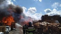 Видео: Мощный пожар площадью 1,2 тысячи квадратных метров охватил птицефабрику вПодмосковье