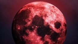 Нишагу издома! Какими жуткими последствиями может обернуться «кровавая луна»?