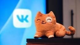 VK запускает сервис «Питомцы», который поможет заботиться одомашних животных