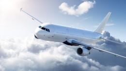 Облетели вкопеечку: белорусской авиаотрасли грозит потеря 100млн долларов