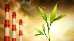 Крупные компании поделились опытом очистки воздуха отпромышленных выбросов