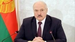 Мывзародыше подавили волну неонацизма: Лукашенко оборьбе соппозицией