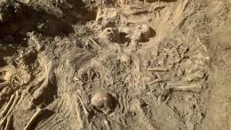 Под Воронежем обнаружено массовое захоронение жертв концлагеря нацистов