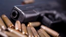 Госдума одобрила ужесточение контроля заразрешением наоружие. Что изменится?
