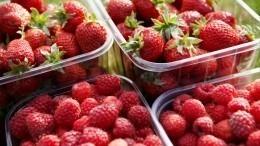 Убийственно вкусные: какие сезонные ягоды ифрукты могут быть смертельно опасны
