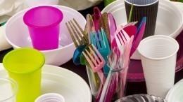 Ватные палочки ипластиковая посуда вне закона: планы Кабмина