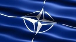 «Безумие!»— Французы высказали свое мнение овступлении Украины вНАТО