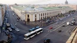 «Перебегала накрасный»: пассажирка автобуса осбитой девушке вцентре Петербурга