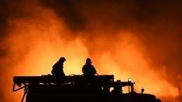 Видео мощного пожара встроящемся корпусе школы наКамчатке