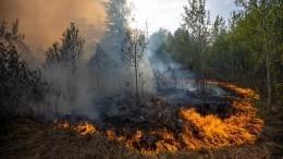 «Чуть несдохли!»— пожарные вТюмени чудом спаслись отогненной стены вреке