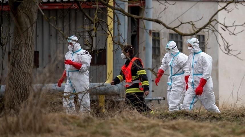 Миру грозит очередная пандемия? Эксперт оценил опасность нового штамма птичьего гриппа