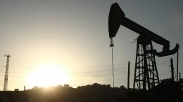 Цены нанефть достигли максимального задва года значения