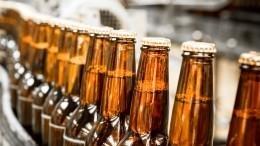 Коварный добродетель: житель Подольска разгромил магазин ибесплатно выдавал пиво