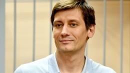 Дмитрия Гудкова освободили из-под стражи