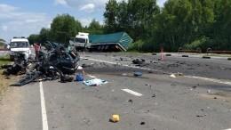 Разорванное авто итела натрассе: четверо погибли вжутком ДТП под Могилевом