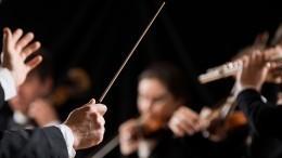 Дорога юным талантам: молодые музыканты выступили вПарке науки иискусства «Сириус» вСочи