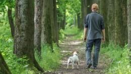 «Хороший» хозяин: россиянам впьяном виде запретят выгуливать животных