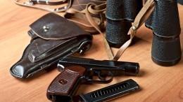 Госдума утвердила закон обужесточении правил оборота оружия