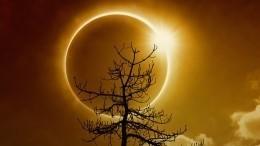 Первое за55 лет: онлайн-трансляция кольцеобразного солнечного затмения
