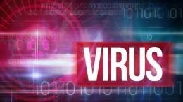 НаУкраине сообщили охищении штаммов опасного вируса