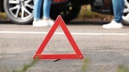 Фура раздавила «всмятку» автомобиль ДПС вПодмосковье, погиб инспектор— видео
