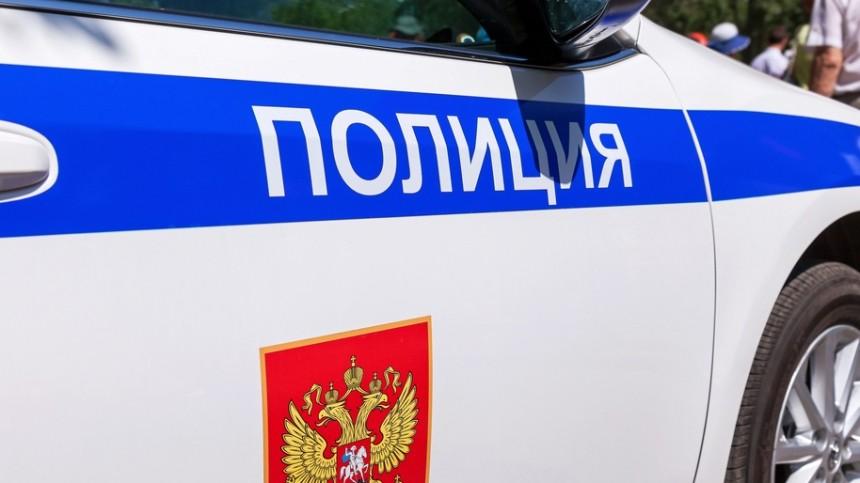 Полицейские страны устроили видео-флешмоб «Города» вчесть Дня России— видео