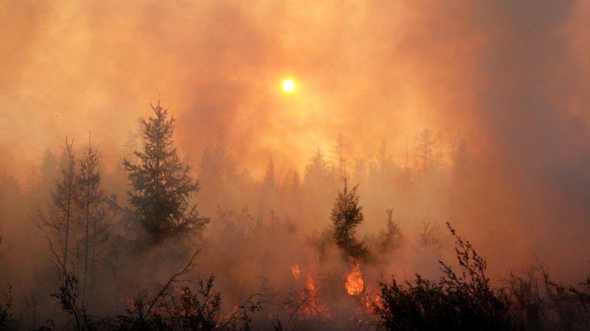 Природный пожар едва нестер слица земли крупный туристический центр вЯкутии