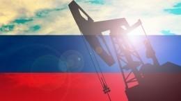Тазовское месторождение: ювелирная добыча нефти изПетербурга наЯмале