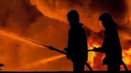 Сильный пожар охватил высотку вАбу-Даби— видео