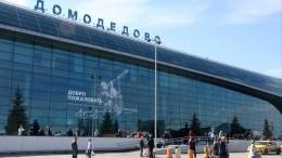 Десятки рейсов «Уральских авиалиний» были задержаны ваэропорту «Домодедово»