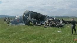 «Столкновение слесным массивом»: специалисты уточнили число жертв крушения самолета вКузбассе