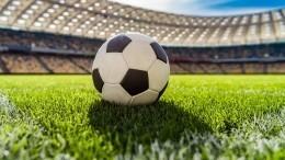 Футбол здорового человека: как русское гостеприимство отодвинуло политику навторой план наЕвро-2020
