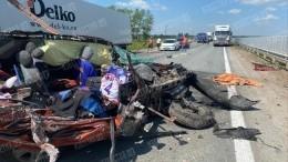 Один ребенок погиб, еще двое пострадали влобовом столкновение сгрузовиком