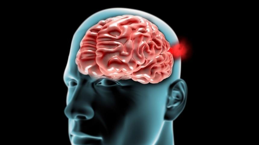 ВМинобрнауки опровергли данные опрограмме правительства по«чипированию мозга»