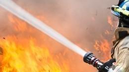 Пожар произошел натерритории Лукомльской ГРЭС вБелоруссии