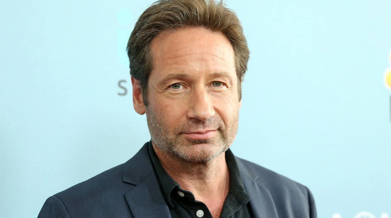 Самые умные звезды Голливуда: ТОП-5 актеров сдипломом Лиги плюща