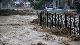 Едва непогибшая при наводнении вЯлте старушка встретилась соспасителем изМЧС